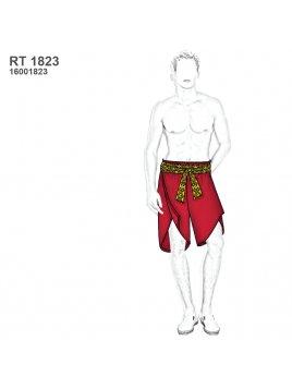 TRAJE MAPUCHE RT 1823
